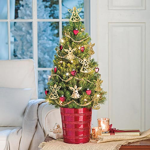The Tradition Of Christmas Trees: The Christmas Tree Tradition